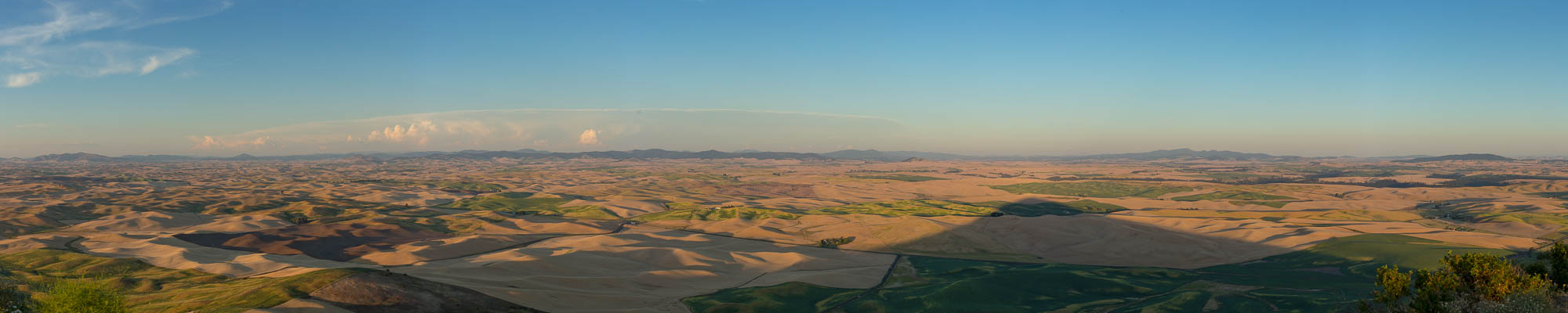 Panorama from Steptoe Butte, Whitman, WA